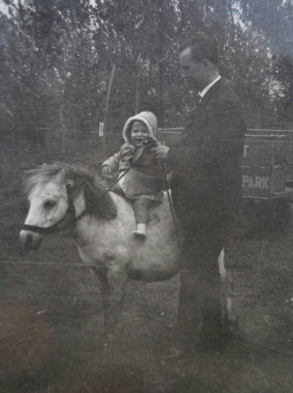 Mijn eigen paard Mijn leerpaard blog Ellen Ducro